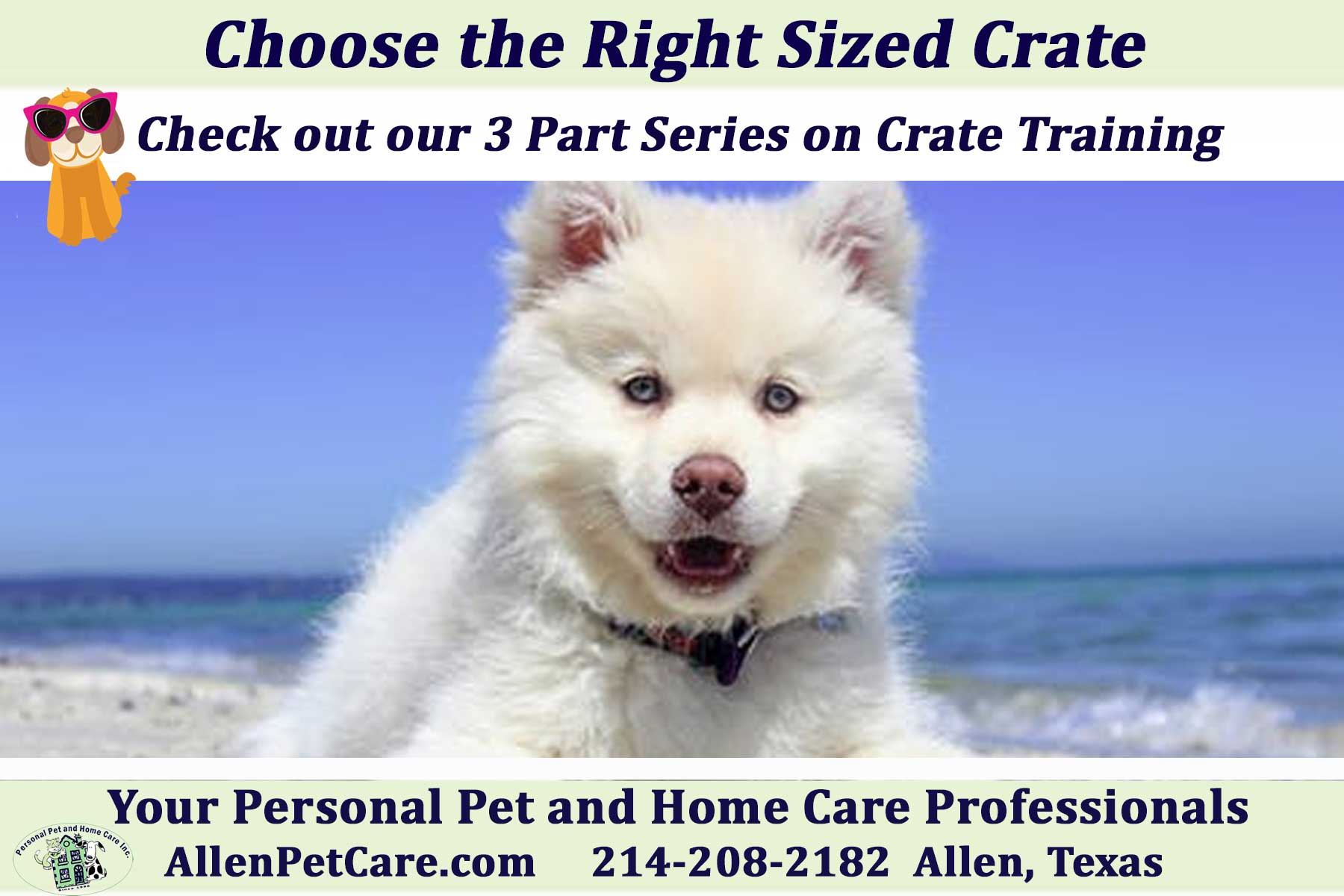 crate training your dog, advice from Personal Pet and Home Care